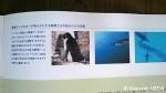 白瀬日本南極探検隊100周年記念「国際講演会」と特別展