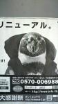 競艇ペンギン「テレッペ」くん