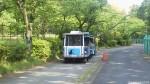 埼玉県子ども動物自然公園の最新型彩ポッポは「青いペンギン号」です(^○^)!!