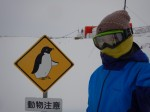 笹森映里隊員の「南極越冬便り」~番外編~